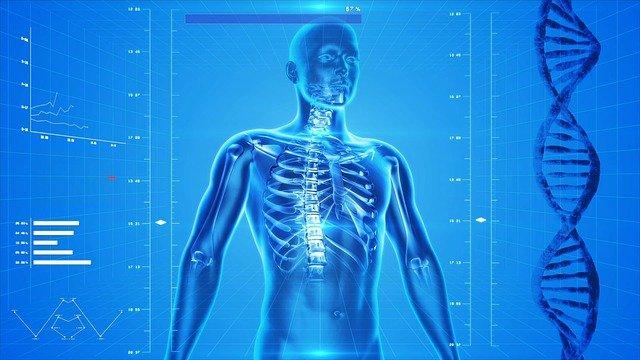 prevenzione DNA corpo umano